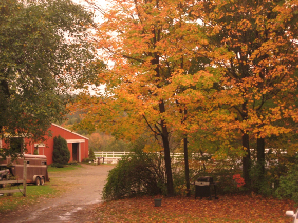 Fall view at Southmowing Stables